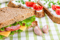 Sandwiches with ham Stock Photos