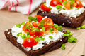 Sandwiches with healthy rye bread, feta and green onions Royalty Free Stock Photo