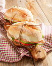 Sandwiches with mortadella and vegetables two Stock Photography