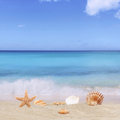 Sandy beach background in summer vacation holidays with sea and Royalty Free Stock Photo