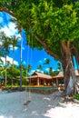 Sandy beach, house, tree