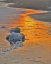 Sandy beach with the light of the setting sun and foam from the waves Royalty Free Stock Images