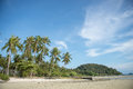 Sandy beach with palm trees on blue sky background with white clouds Royalty Free Stock Photo