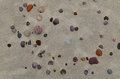 Sandy beach with small pebbles Royalty Free Stock Photo