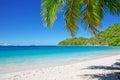 Sandy beach at summer sunny day. Royalty Free Stock Photo