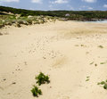 Sandy beach view of called la caletta carloforte sardinia Royalty Free Stock Photography