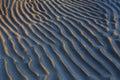The sandy beaches. Royalty Free Stock Photo