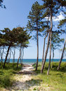 Sandy path to the sea Stock Photography