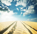 Sandy road in the desert under a blue sky Royalty Free Stock Photos