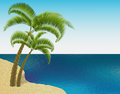 Sandy sea shore. Two palm trees. Exotic travel. Ripples on the sea. Landscape. illustration