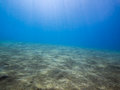 Sandy seabed with blue water and sunlight Stock Images