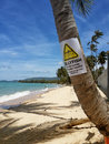 The sandy shores of the azure sea. Waves and palm tree  with a warning sign. Royalty Free Stock Photo