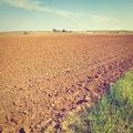 Sandy soil poor after the harvest in israel instagram effect Stock Image