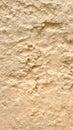 Sandy Soils Surface