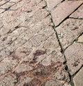 sanpietrini arsizio stree pavement of a curch and marble