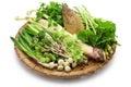 Sansai, japanese edible wild plants vegetables Royalty Free Stock Photo