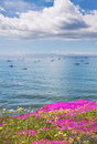 Santa Barbara Anchorage and Flowers Stock Photo