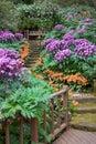 Santa Barbara Garden Royalty Free Stock Photo