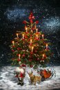 Santa Claus Christmas tree and Deer Royalty Free Stock Photo