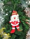 Santa claus and christmas tree. Royalty Free Stock Photo