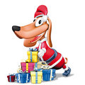 Santa Claus dog and gift Stock Photo