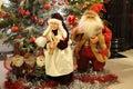 Santa Claus and Mrs Claus Royalty Free Stock Photo