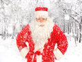 Santa claus in winter forest the Royalty Free Stock Photos
