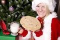 SAnta helper having a snack Royalty Free Stock Images