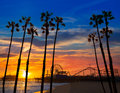 Santa monica california sunset on pier ferrys wheel and reflection beach wet sand Stock Photography