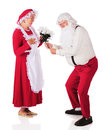 Santa romancing giving a bouqet of white poinsettias to mrs claus on a white background Royalty Free Stock Image