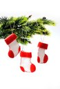 Santa s boots on christmas tree three Stock Image