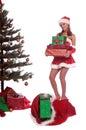 Santa's  Helper Mrs Claus Royalty Free Stock Image