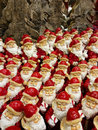 Santaclaus Royalty Free Stock Photo