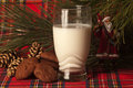 Santaclaus claus real cookies chocolate and a glass of milk placed on a red tartan cloth with some pine cones under a pine tree Royalty Free Stock Photos