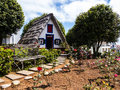Santana in Madeira is a beautiful village on the north coast. is known by its small thatched triangular houses. Dragon Trees and f