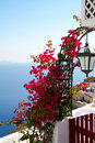 Santorini. Greece. Royalty Free Stock Image