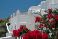 Santorini Greek Island scene Stock Images