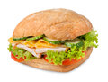 Sanwich with chiken and cheese Stock Image