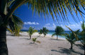 Saona island beach - Dominican republic Royalty Free Stock Photography