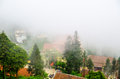 Sapa in the mist lao cai vietnam landscapes Royalty Free Stock Photo