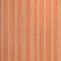 Sapele wood grain entandrophragma cylindricum Stock Photography