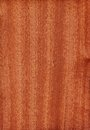 Sapele (wood texture) Royalty Free Stock Image