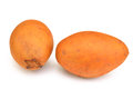 Sapodilla on a white background Stock Images