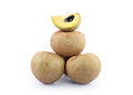 Sapota isolated on a white Royalty Free Stock Photography