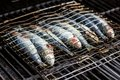 stock image of  Sardines in a fish grilling being cooked in a bbq.