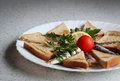 Sardines and toasted bread Royalty Free Stock Photo