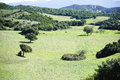 Sardinia green valley with the colors of an early spring italy Royalty Free Stock Photography