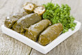 Sarma rice and mint wrapped in grape vine leaves Stock Photography