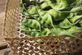 Sator Parkia speciosa Thai vegetable in tradional wicker basket on natural mat. Beautiful exotic Thai food ingredient Royalty Free Stock Photo