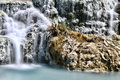 Saturnia, white waterfall Stock Image